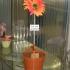Spendenbox Blumentopf